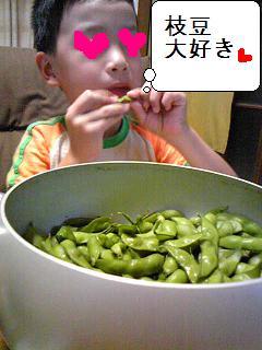枝豆2009