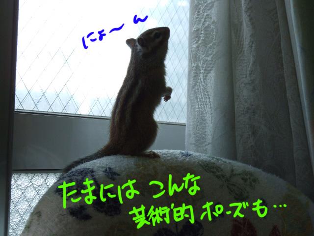 DSCF6938a.jpg