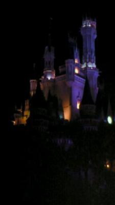 ディズニー城2