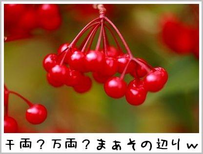 IMG_27261.jpg