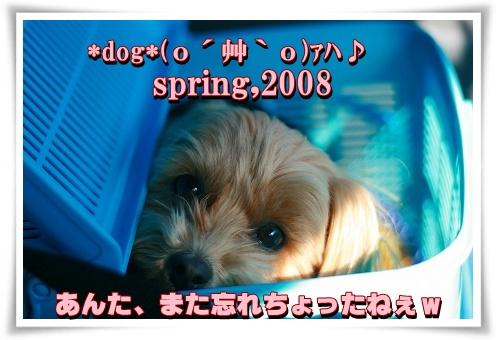 IMG_4843.jpg