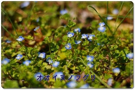 IMG_54jki8o66.jpg
