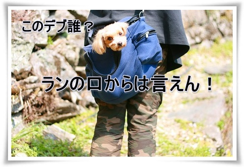 IMG_5a709.jpg