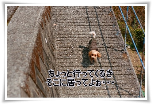 IMG_5a722.jpg