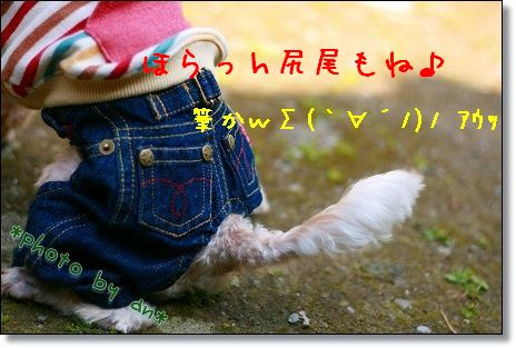 IMG_7826.jpg