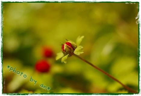 IMG_8356.jpg