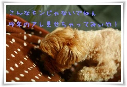 IMG_8862.jpg