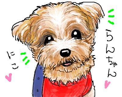 snap_lookblog_200854171113.jpg