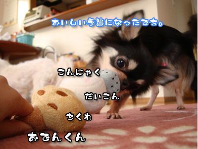 fdss.jpg