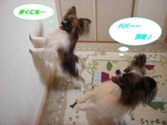 23-02_20080824094310.jpg
