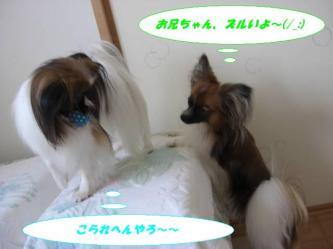 25-01_20080825210601.jpg