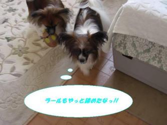 25-06_20080825210710.jpg