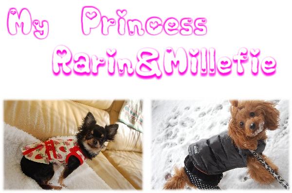 Princess Rarin Millefie