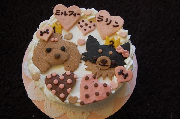 2.5 Rarin Millefie Birthday Cake?