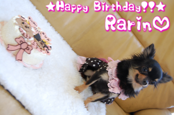 Happy Birthday Rarin