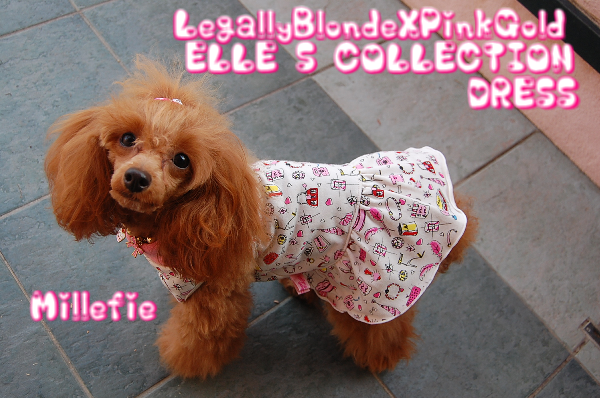 LegallyBlonde×PinkGold ELLES COLLECTION DRESS Millefie