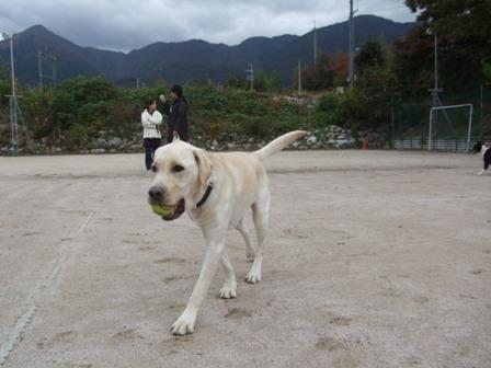 2008_11095gatu0023.jpg