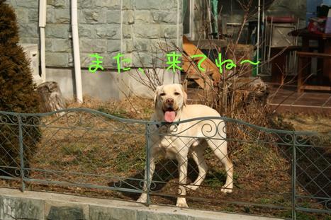 2009_02095gatu0043.jpg