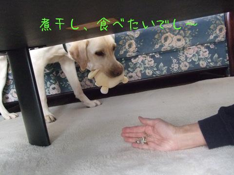 2009_04085gatu0006.jpg