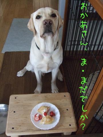 2009_04085gatu0010.jpg