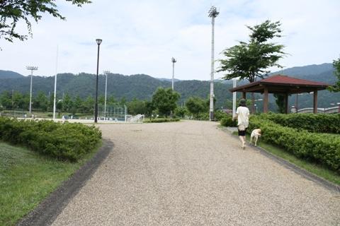 2009_07125gatu0051.jpg