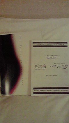 20081201000357