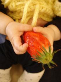 おっきいイチゴ