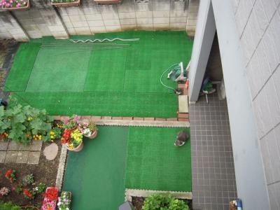 2階からの庭
