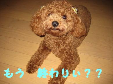 IMG_0024_1.jpg
