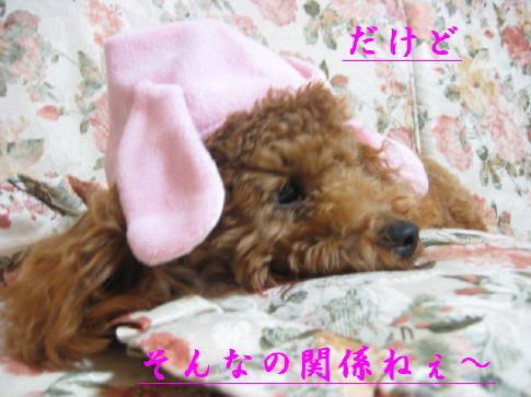 IMG_2183_2.jpg