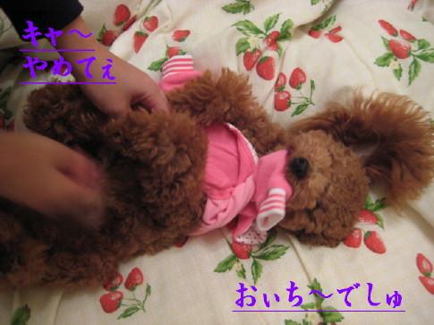 IMG_2219_2.jpg