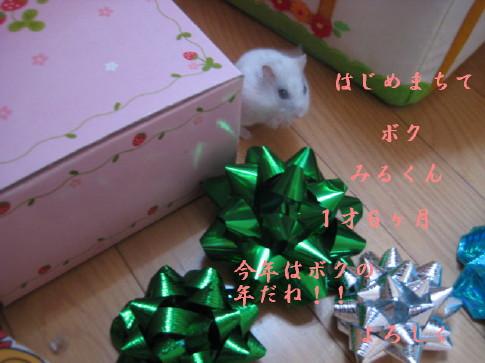 IMG_3309_1.jpg