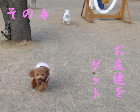IMG_3469_1.jpg
