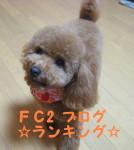 IMG_4104_1_1.jpg