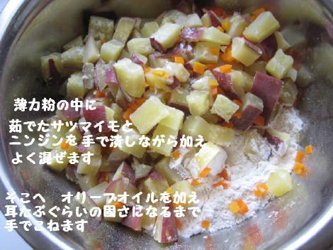IMG_4380_1.jpg
