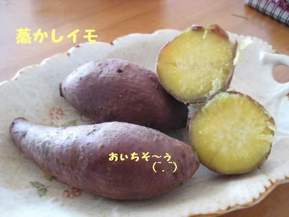 IMG_4797_1.jpg