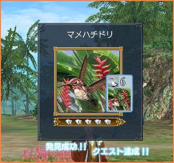 2009-01-25_09-38-47-002.jpg