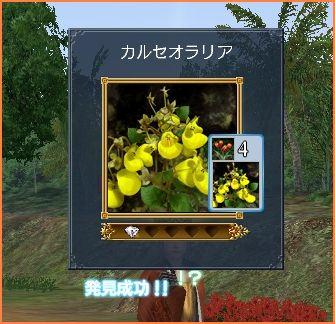 2009-01-25_09-38-47-016.jpg