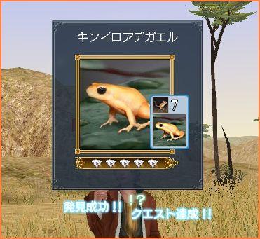2009-04-04_12-51-52-004.jpg