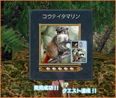 2009-04-08_20-18-43-007.jpg
