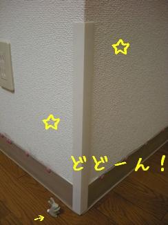 DSCN0762.jpg