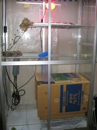 20091217.jpg