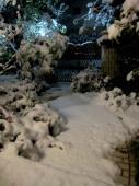 neige4951.jpg