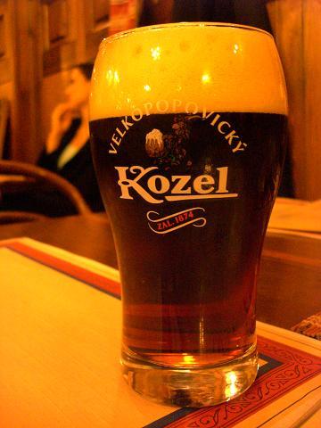 czeck beer