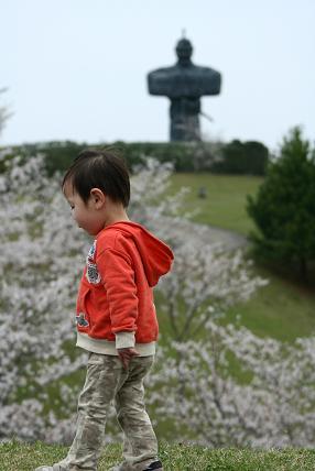 sakurayago5.jpg