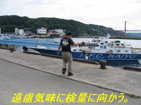 2008石鯛釣り大会6