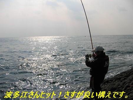 壱岐_1126_2