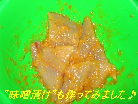 片島_20081223_10