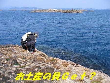 2009チヌ釣りいかが④