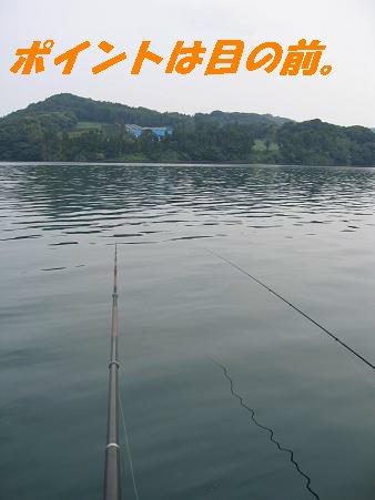 なおき丸6